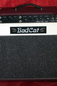 2001 Bad Cat Black Cat 30