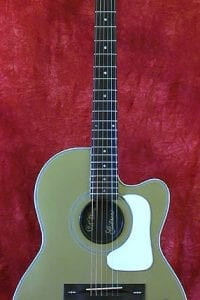1989 Gibson Chet Atkins 12-String