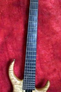 1989 Tobias Basic 6-String