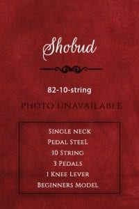 Shobud Guitar-82-10-string